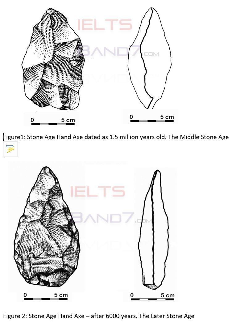 stone IELTS band7