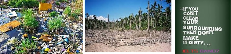 IELTS ESSAY : Causes and Solution To Environmental Damage